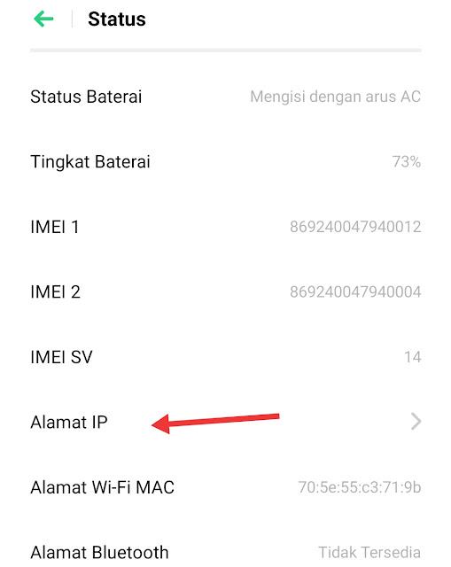 cara cek ip address hp android