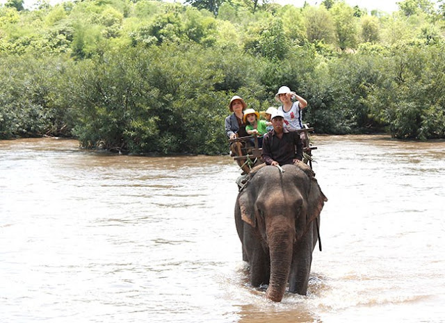 Du lịch cưỡi voi vượt sông Sêrêpôk.