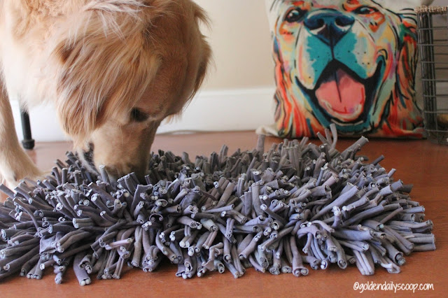 helping-dogs-use-their-nose-with-the-wooly-snuffle-mat