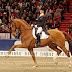 Cavalo fica com a cabeça inchada 3 dias antes da competição. O que acontece na frente de milhões de pessoas, emociona os espectadores das Olimpíadas.