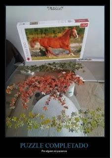 Puzzle de un mal terminado