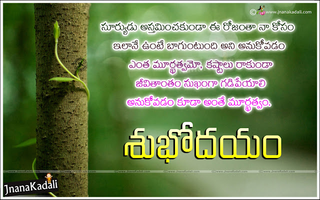 best good morning quotes in telugu, latest good morning success sayings