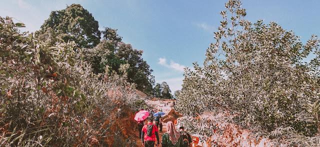Hiking di Bukit Seguntor Sandakan