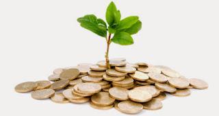 L'importante non è il reddito ma la capacità di accrescere il patrimonio!