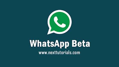 Download WhatsApp Beta Official v2.20.206.11 APK MOD Terbaru 2020,wa Beta latest version 2020,tema whatsapp mod keren,aplikasi whatsapp anti blokir