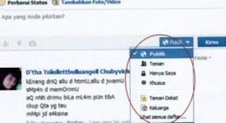 mengatur siapa yang melihat update status facebook 1