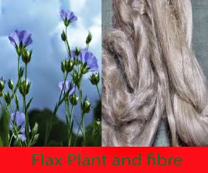 Properties and uses of Natural Fibre, Flax