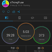 Garmin Run Data