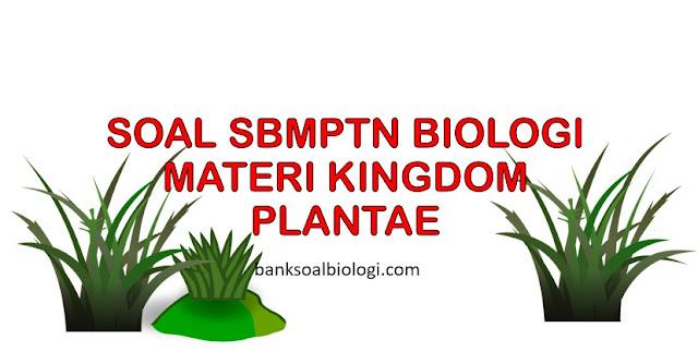 Soal SBMPTN Biologi dan Pembahasannya Materi Kingdom Plantae