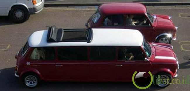 Mini Limousine