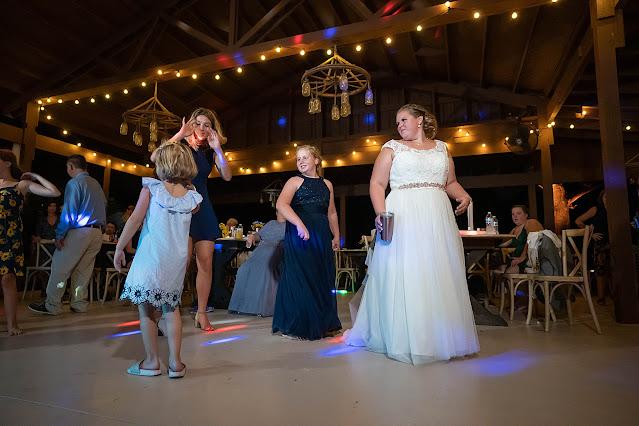 Reception fun Magnolia Manor Wedding Photos by Stuart Wedding Photographer Heather Houghton Photography