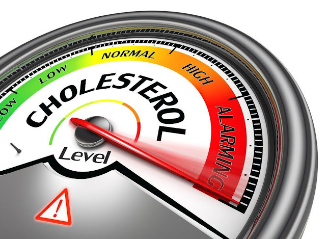 Jual Obat Herbal Kolesterol Alami