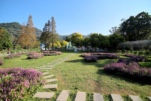 桃園大溪景點 親子 婚紗拍攝 富田香草休閒農場