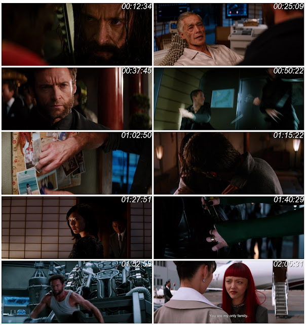 The Wolverine 2013 Dual Audio Download 1080p BluRay