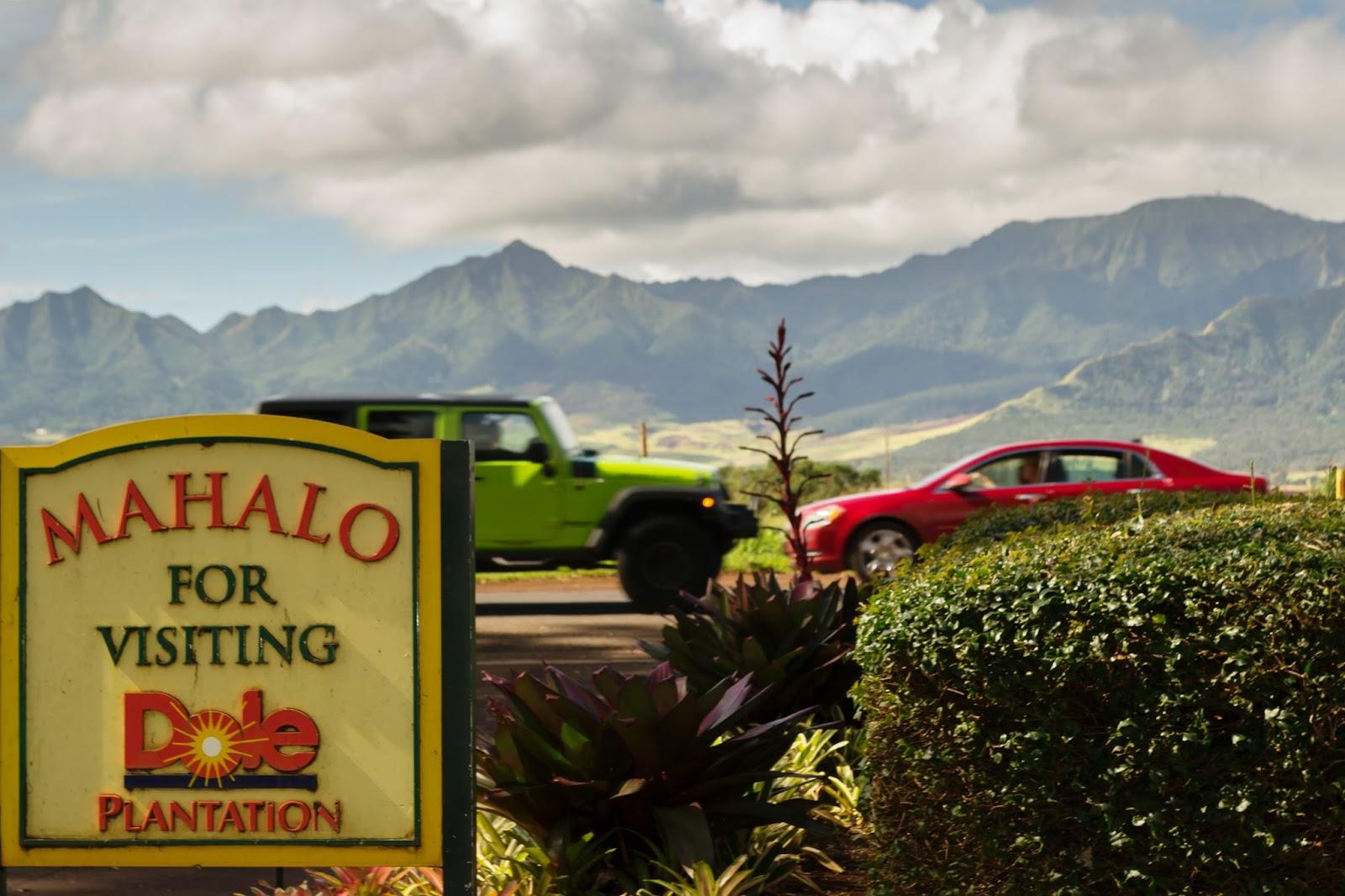 Dole Plantation in Oahu