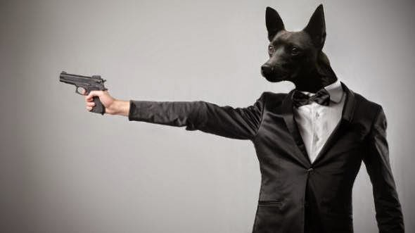 funny dog pics with guns - photo #19