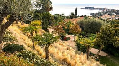 Los jardines mediterráneos (y sostenibles) de Laurélie de la Salle