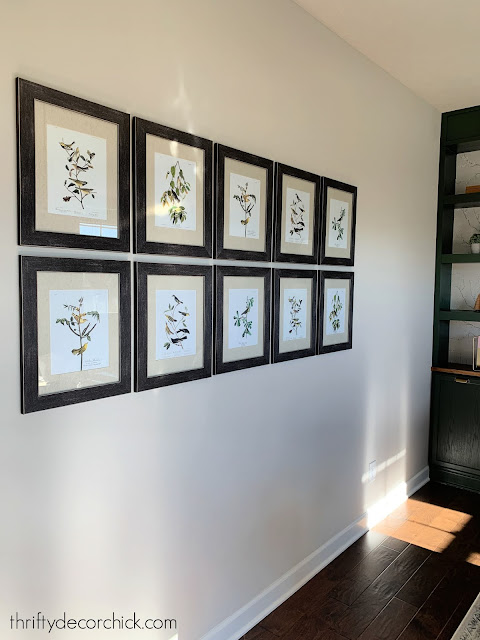 gallery wall with botanical prints