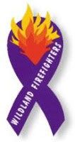 Image result for wildland firefighter purple ribbon small