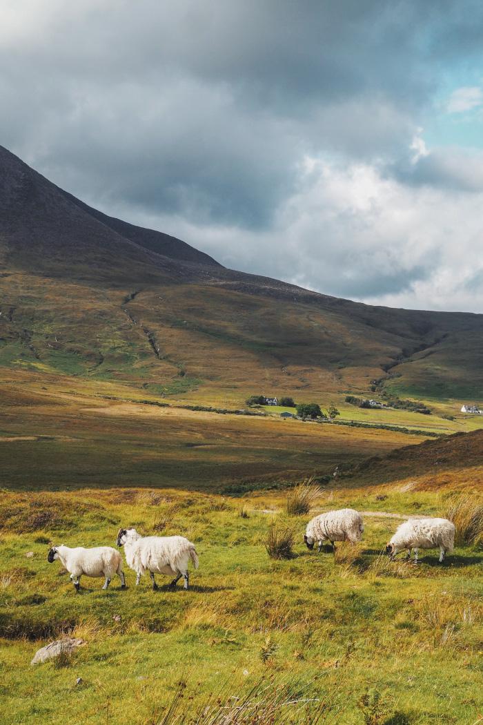 l'île de Skye en Ecosse