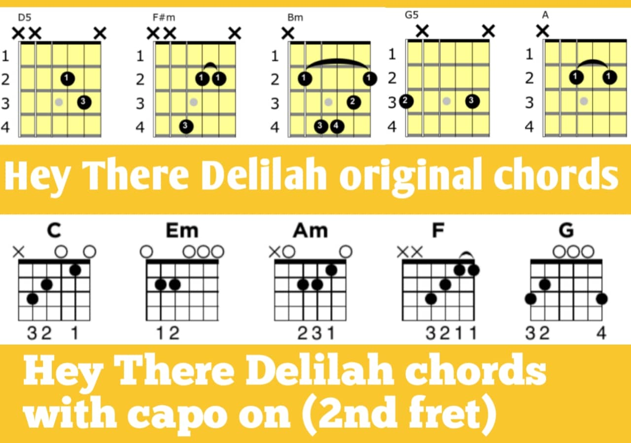 Hey There Delilah chords guitar by Plain White T W/WH Capo ...