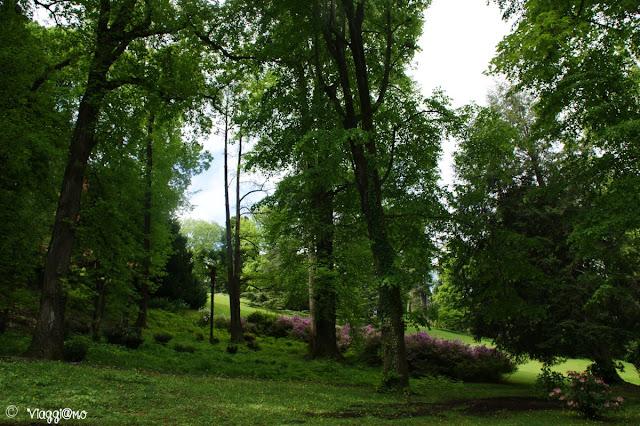 Alcuni degli alberi del Parco Pallavicino di Stresa