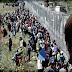 Robban a botrány! Megvan a bizonyíték a szervezett migrációra! Eddig senki nem hitt Magyarországnak!