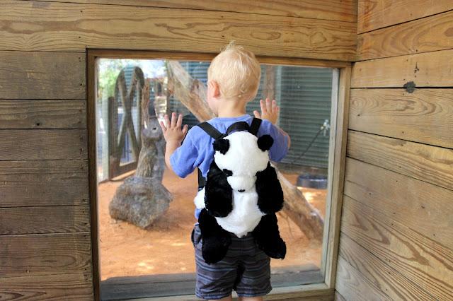The Houston Zoo