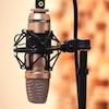 Principles of acoustics