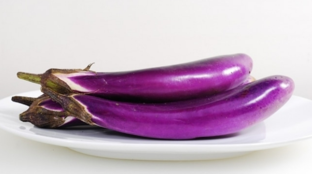 Eggplant is ane of the vegetables that has been widely known yesteryear the people The benefits of regal eggplant