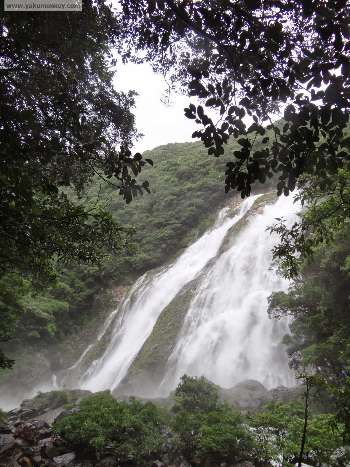 Oko-no-taki Waterfall, Yakushima