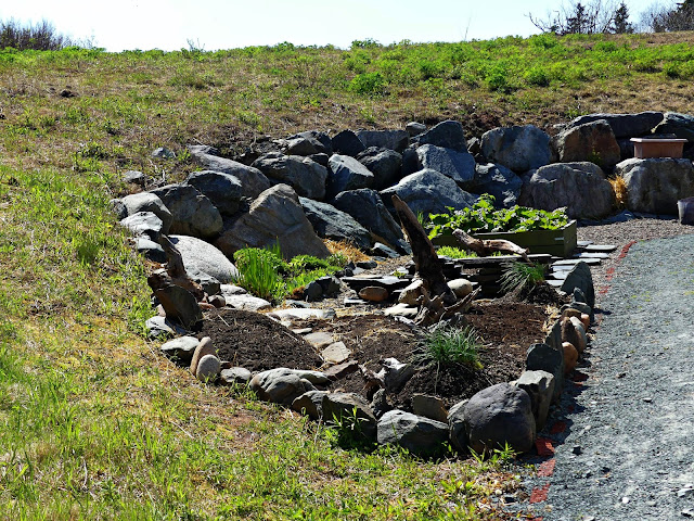 Building the NEW Paisley rock garden apart of the spiral rock wall.