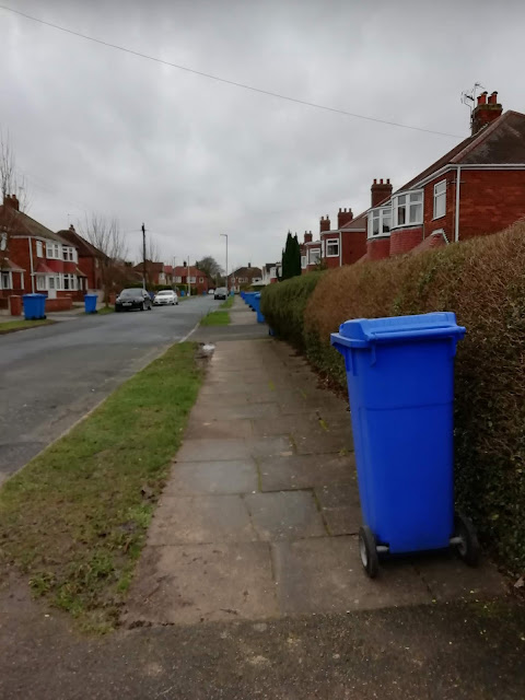 Photo shows one side of the street. There is grass between the pavement and the road and hedges down the side of people's properties. It's blue bin day and each house has their blue bin set as close to the hedge as possible, leaving the path free for wheelchairs and buggies. It's all very neat and tidy!