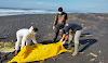 Heboh..!!! Mayat Tanpa Identitas Ditemukan di Bibir Pantai Watu Pecak