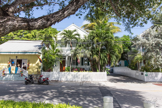 In Florida They Salt Margaritas Not Sidewalks - Key West