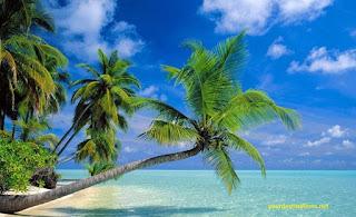 Beach in Molokai