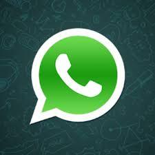 cara menggunakan whatsapp di android