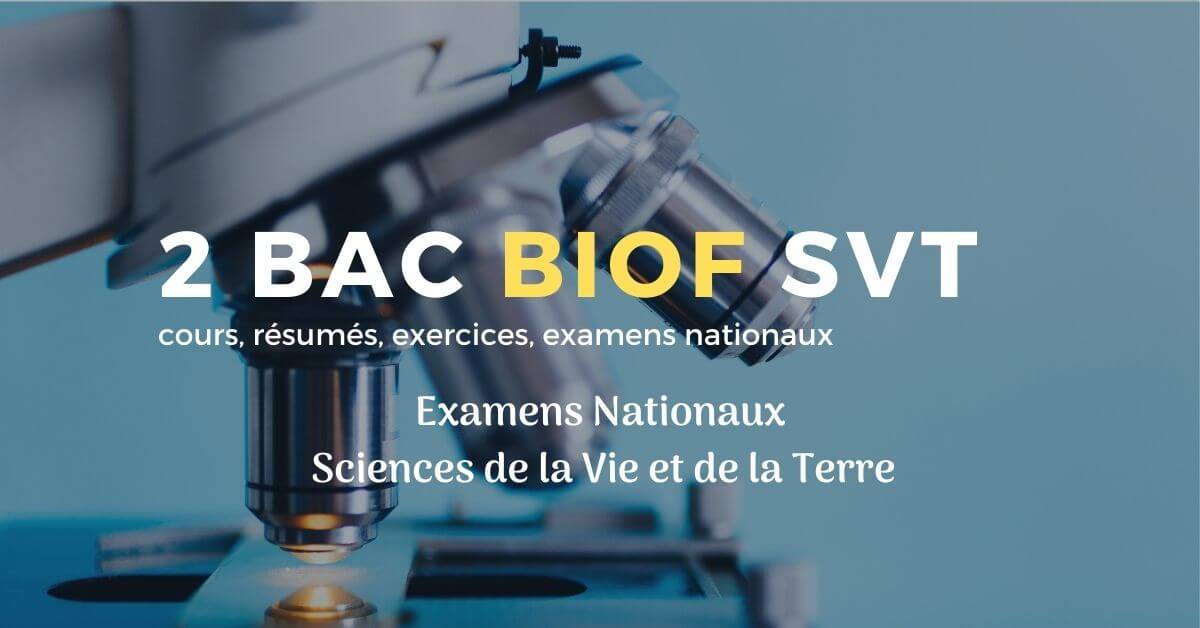 Examen National Sciences de la Vie et de la Terre Rattrapage 2019, ( Corrigé )