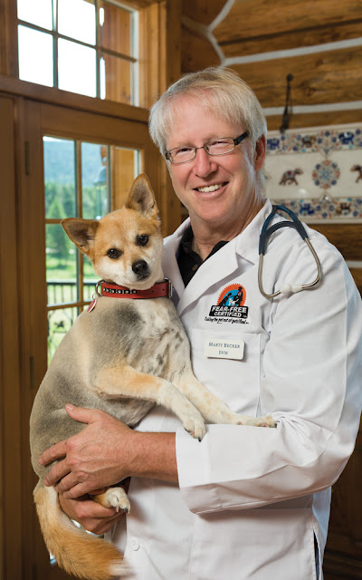 Dr. Marty Becker and a dog, talking about the Fear Free initiative