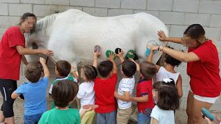 Niños de espalda poniéndo en práctica todo lo aprendido sobre cepillos.