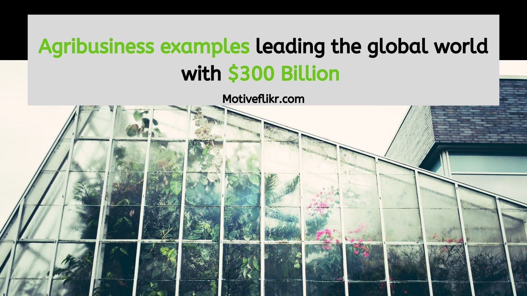 Agribusiness examples leading the global world with 300 Billion Dollars