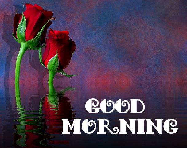 Good Morning Ji