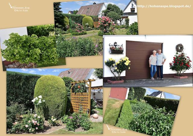 Moderne Gärten Mit Gräsern Ostseesuche Com
