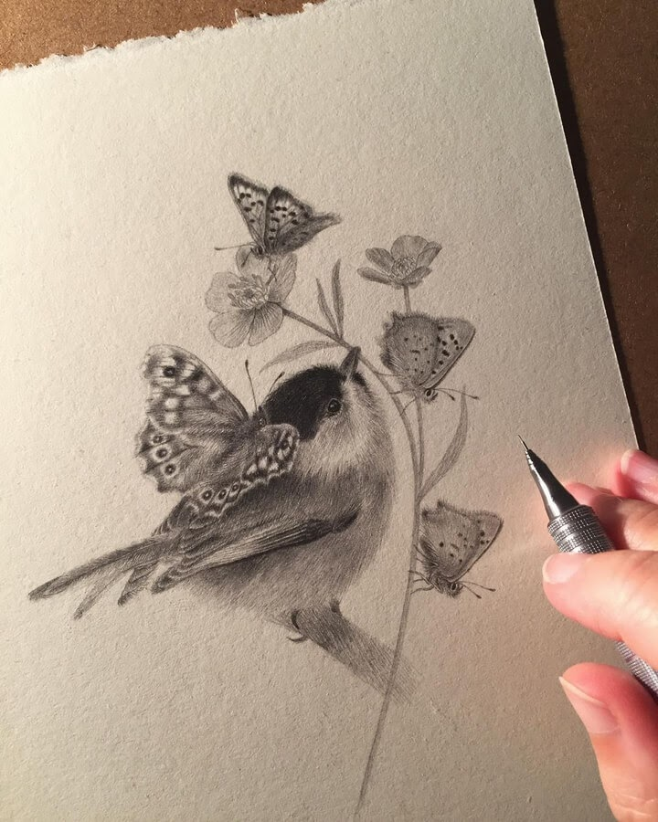 04-Bird-and-butterfly-friends-Katrin-Berge-www-designstack-co