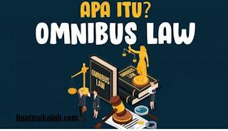 Omnibus Law Sebuah Pedang Tajam Tapi Kalau Hanya Buat Ngupas Mangga Awas Aja Contoh Makalah