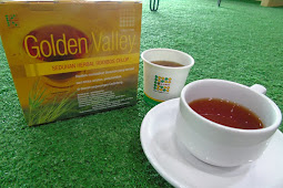 Minuman Herbal Antioksidan: Dapatkan 4 Manfaat Teh Golden Valley SOD untuk Kecantikan