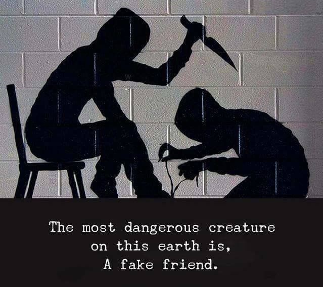 Quotes About Fake Friendship New Best Fake Friends Quotes  Best Quotes And Sayings