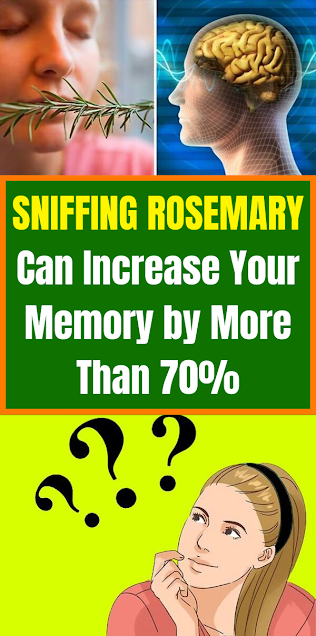 Sniffing Rosemary Can Increase Your Memory by More Than 70%