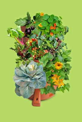 Grow 50 Different Plants on Your Patio with the GARDEN TOWER 2 by Garden Tower Project