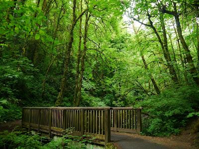 https://www.onlyinyourstate.com/oregon/forest-park-or/